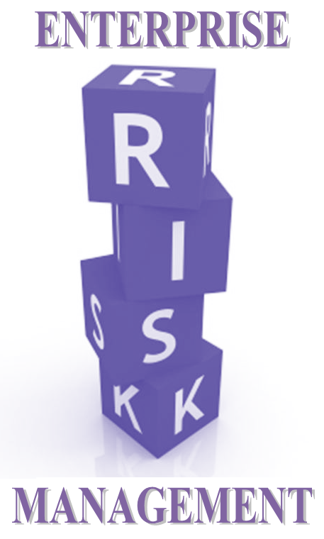 RSK2601-MNK203R Enterprise Risk Management
